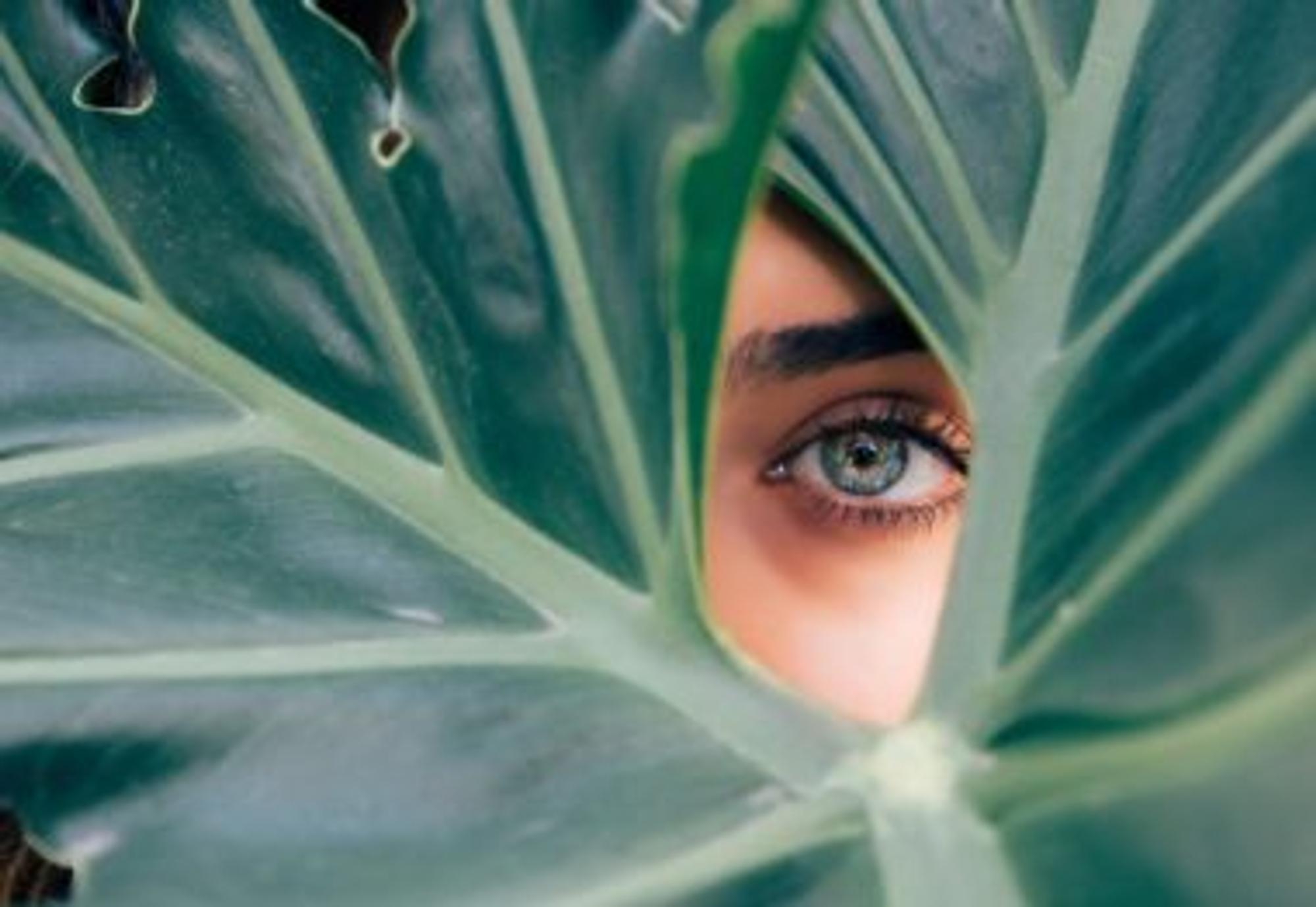 Das Auge einer Frau blickt durch Blätter hindurch. Ist auch ihr drittes Auge geöffnet?