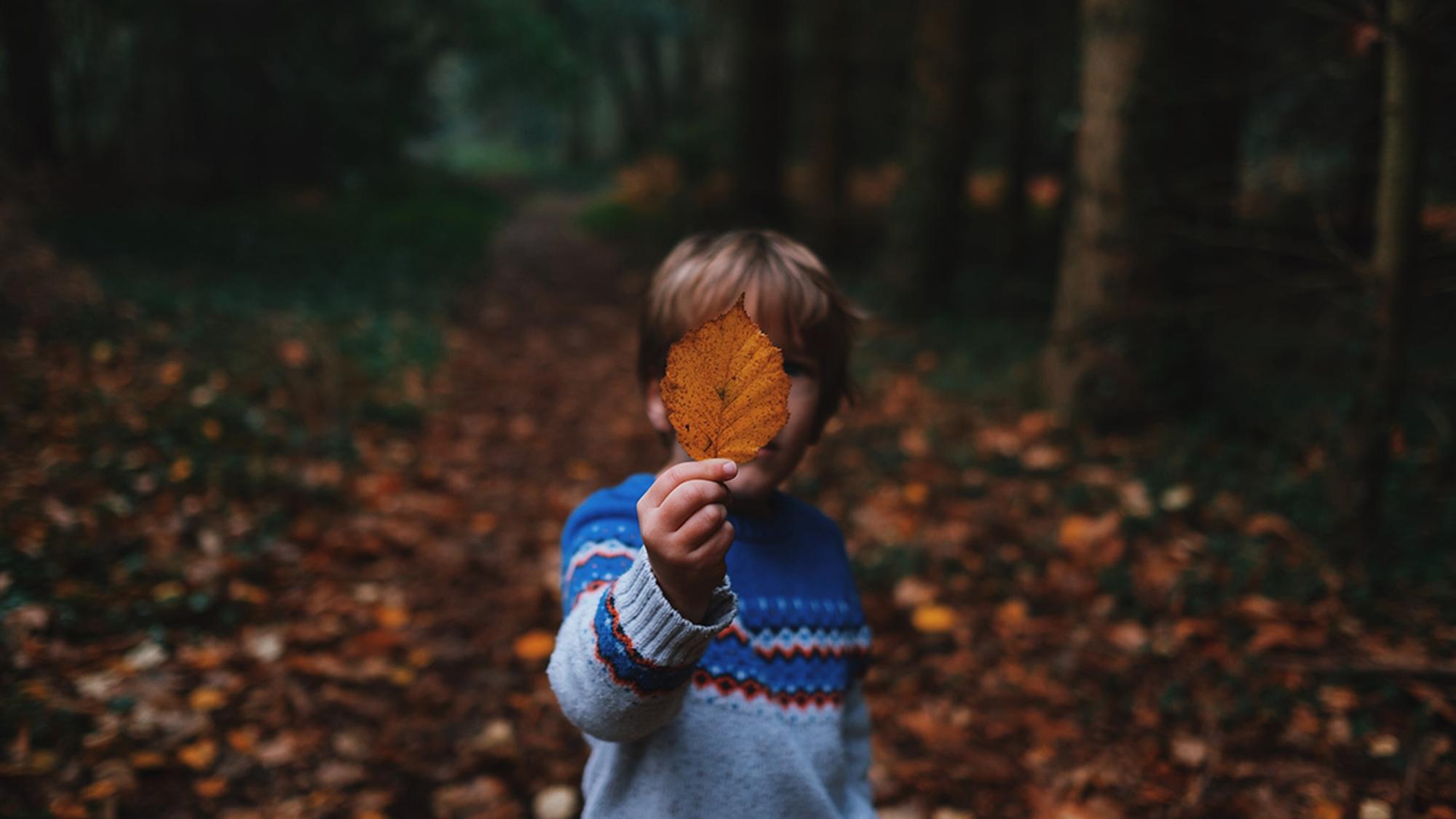 Junge spielt mit Herbstlaub