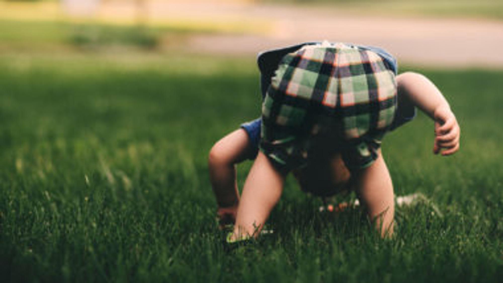 Kind sucht etwas auf einer Wiese