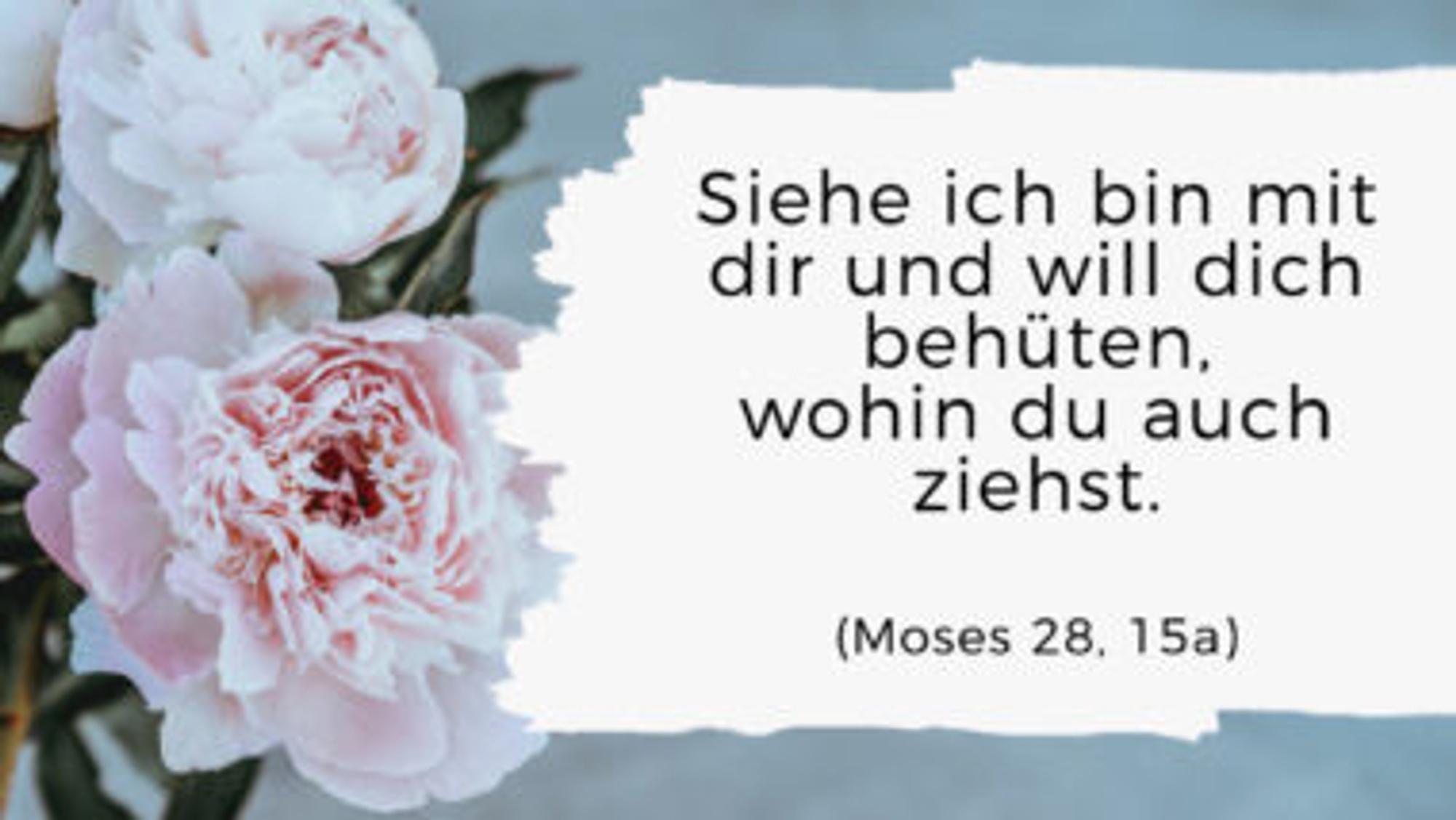 Tauflieder Für Den Gottesdienst Mit Text Und Hörprobe