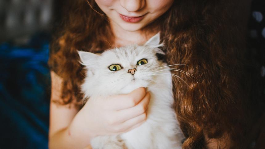 Ein Mädchen hat eine Katze auf dem Arm