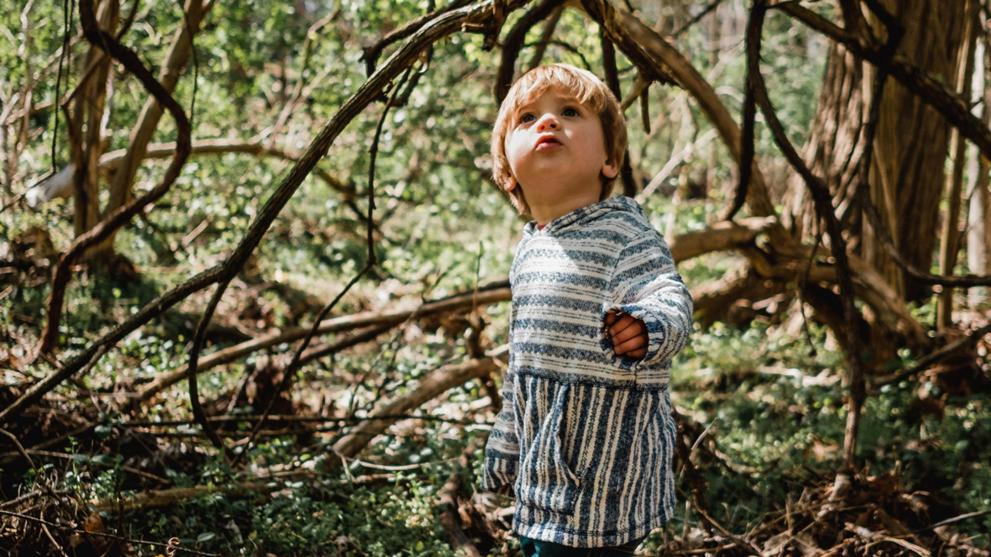 Kind 2 Jahre Alle Entwicklungsschritte Im Uberblick Hallo Eltern