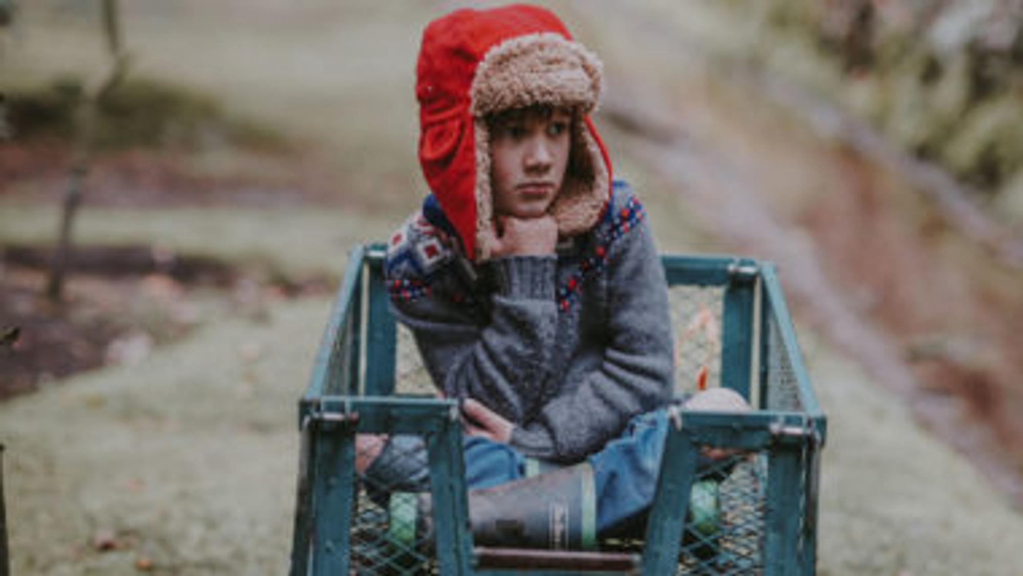 Junge sitzt in einem Bollerwagen in der Natur