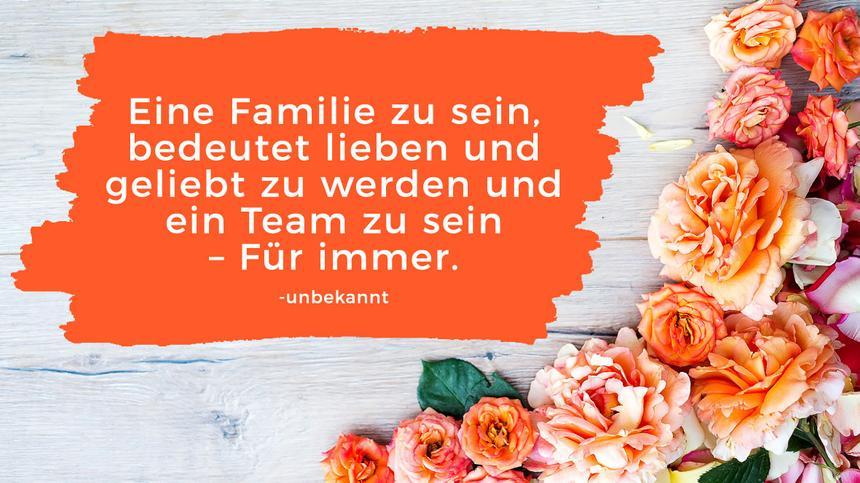 Familie streit in sprüche der Die besten