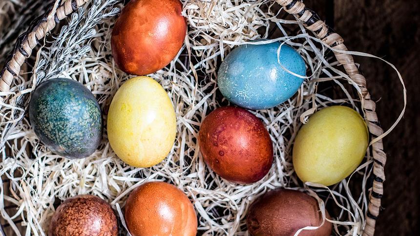 Bunte Eier liegen in einem Osternest