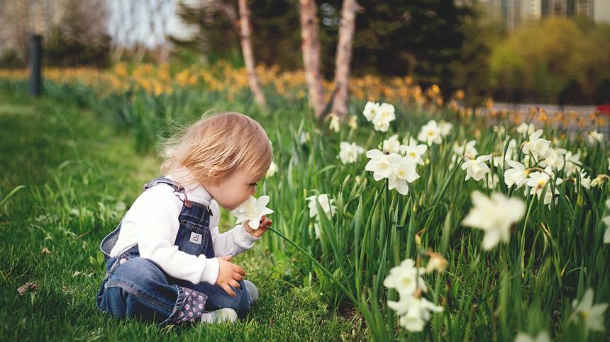 Kind sitzt vor Blumen