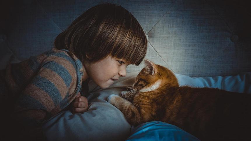 Kinder und Haustiere werden schnell ein Herz und eine Seele. Zeigt sich dann eine Tierhaarallergie, fällt die Trennung beiden schwer. Deswegen ist es ratsam, im Vorfeld zu testen.